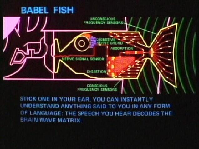 real-time-translator-ear-waverly-labs-1
